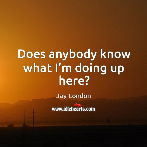 Does anybody know what I'm doing up here? Jay London Picture Quote