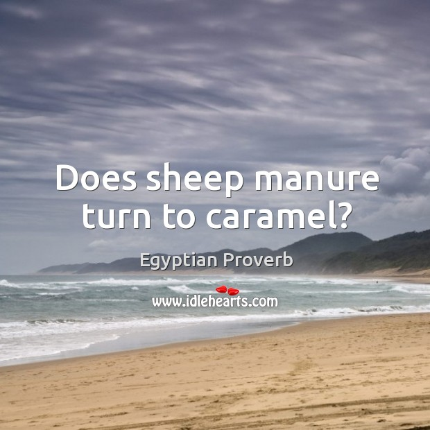 Does sheep manure turn to caramel? Egyptian Proverbs Image