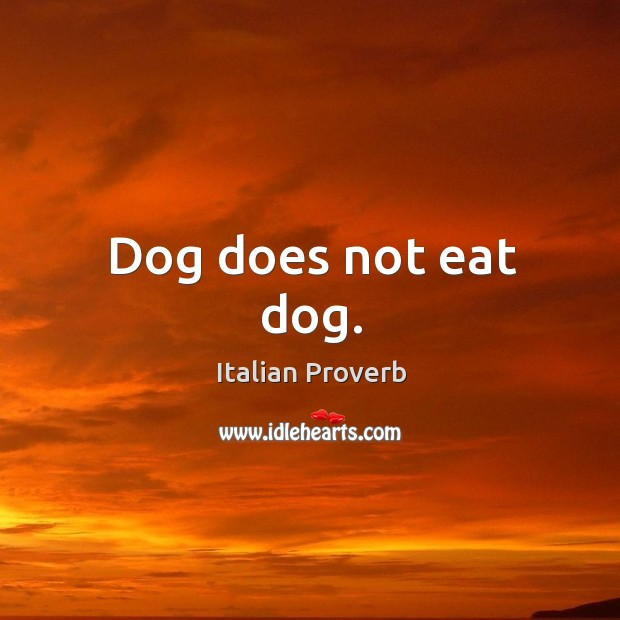 Image, Dog does not eat dog.