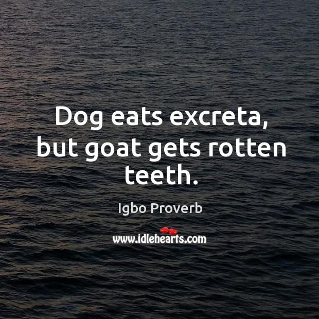 Dog eats excreta, but goat gets rotten teeth. Igbo Proverbs Image