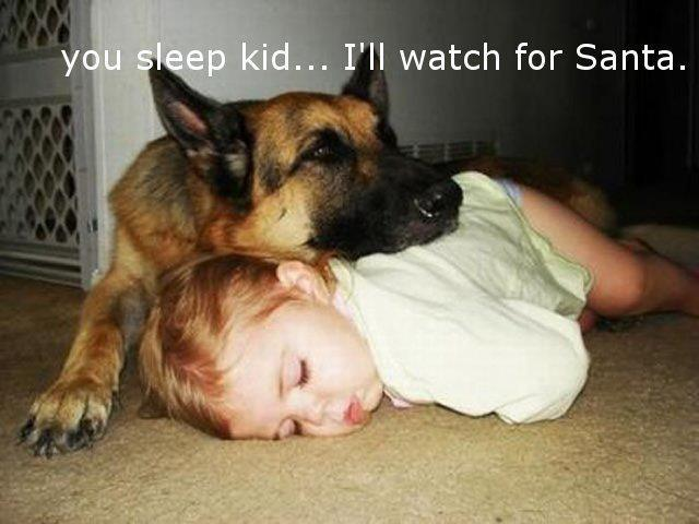 You sleep kid, I will watch out for Santa. Funny Quotes Image