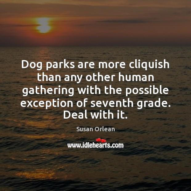 Dog parks are more cliquish than any other human gathering with the Susan Orlean Picture Quote
