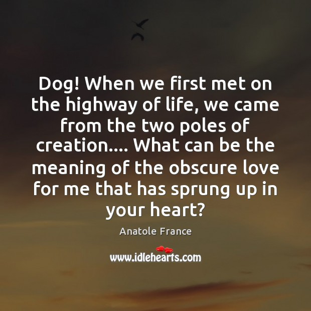 Dog! When we first met on the highway of life, we came Anatole France Picture Quote