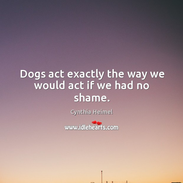 Dogs act exactly the way we would act if we had no shame. Image