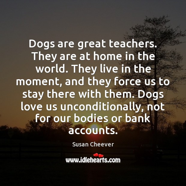 Dogs are great teachers. They are at home in the world. They Susan Cheever Picture Quote
