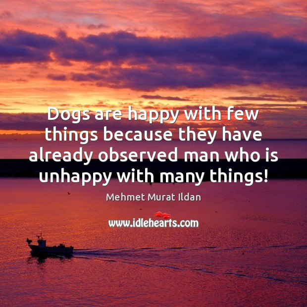 Image, Dogs are happy with few things because they have already observed man