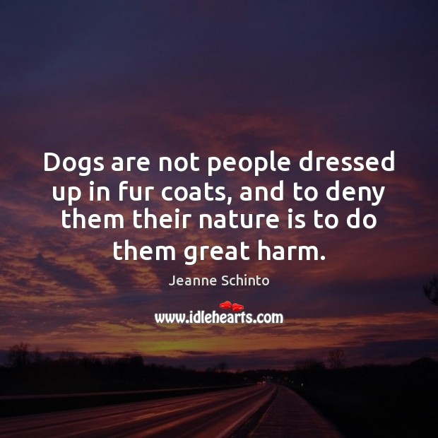 Dogs are not people dressed up in fur coats, and to deny Image