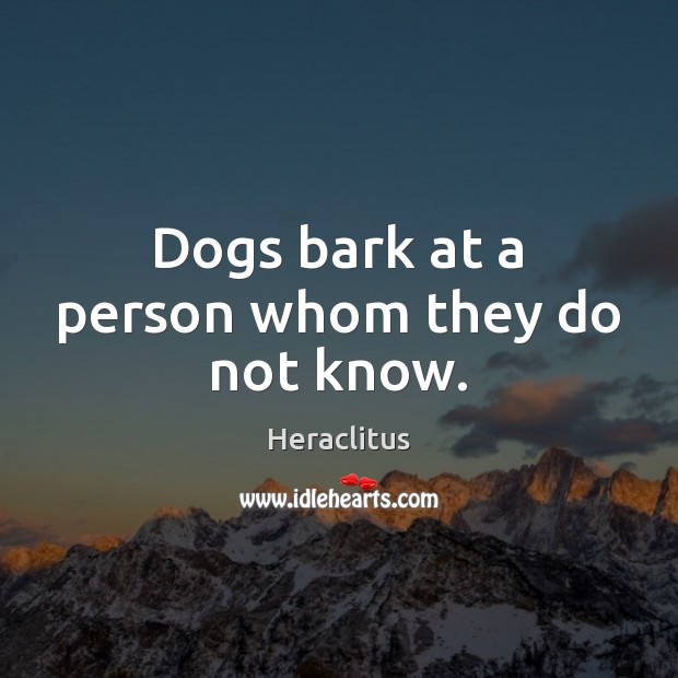 Dogs bark at a person whom they do not know. Image