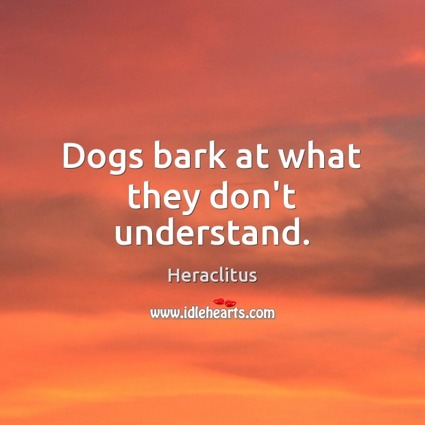 Dogs bark at what they don't understand. Heraclitus Picture Quote