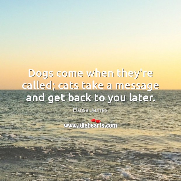 Image, Dogs come when they're called; cats take a message and get back to you later.