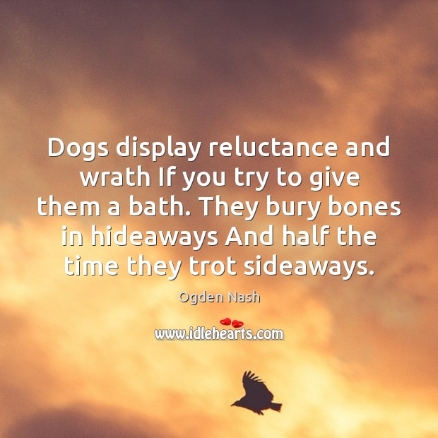 Image, Dogs display reluctance and wrath If you try to give them a