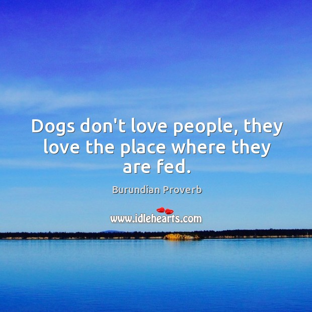 Dogs don't love people, they love the place where they are fed. Burundian Proverbs Image