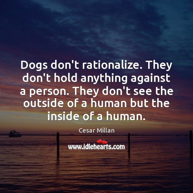 Dogs don't rationalize. They don't hold anything against a person. They don't Image