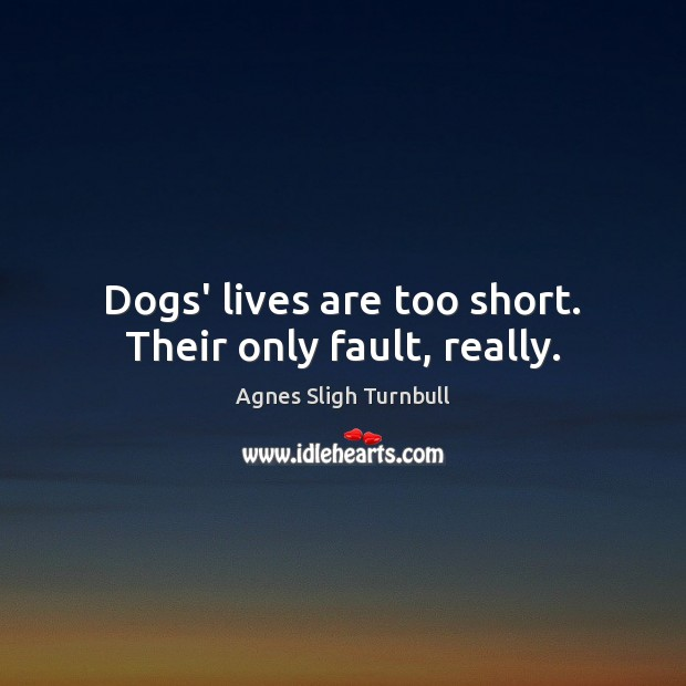 Dogs' lives are too short. Their only fault, really. Image