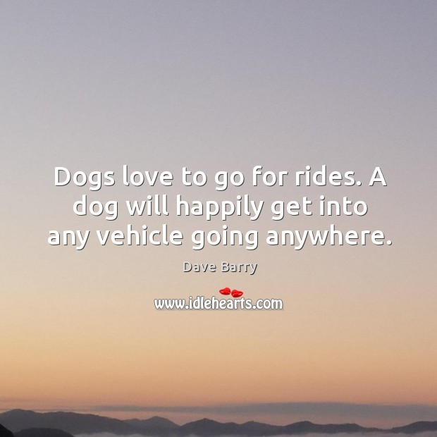 Image, Dogs love to go for rides. A dog will happily get into any vehicle going anywhere.