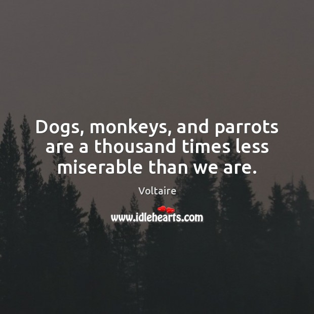 Image, Dogs, monkeys, and parrots are a thousand times less miserable than we are.