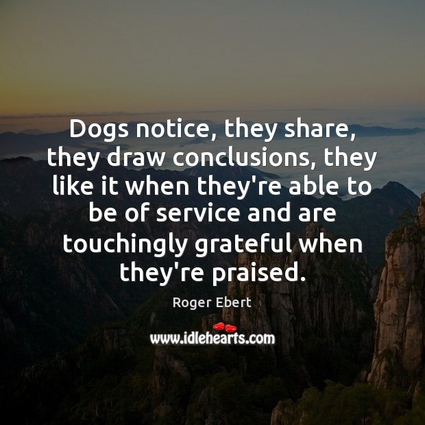 Dogs notice, they share, they draw conclusions, they like it when they're Image