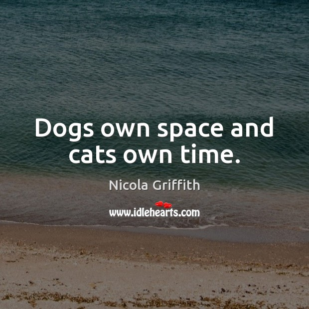 Dogs own space and cats own time. Image