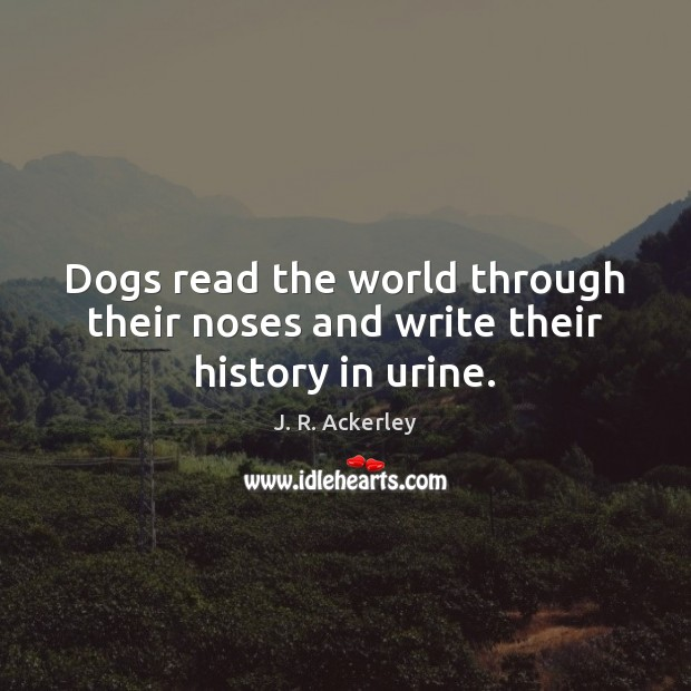 Dogs read the world through their noses and write their history in urine. J. R. Ackerley Picture Quote