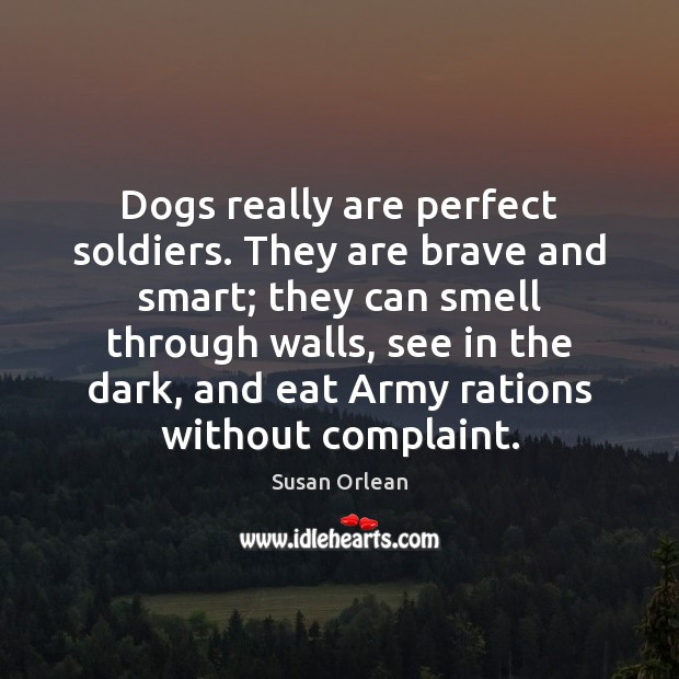 Dogs really are perfect soldiers. They are brave and smart; they can Susan Orlean Picture Quote