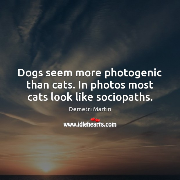 Dogs seem more photogenic than cats. In photos most cats look like sociopaths. Image