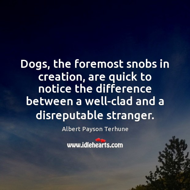 Image, Dogs, the foremost snobs in creation, are quick to notice the difference