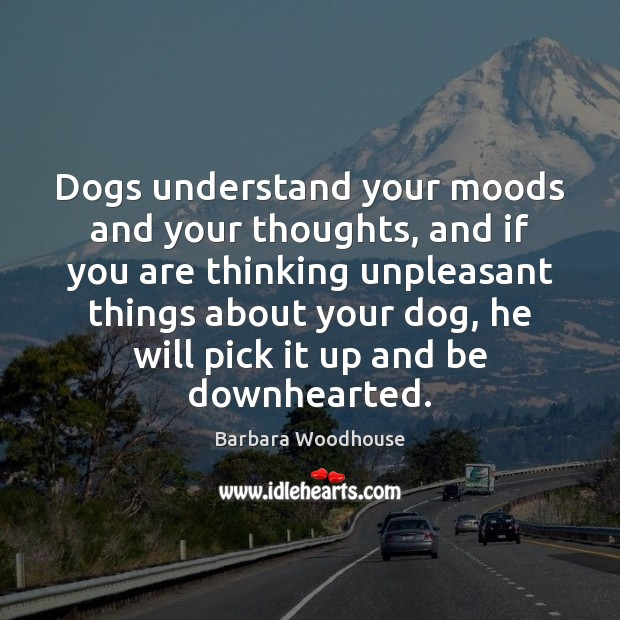 Image, Dogs understand your moods and your thoughts, and if you are thinking