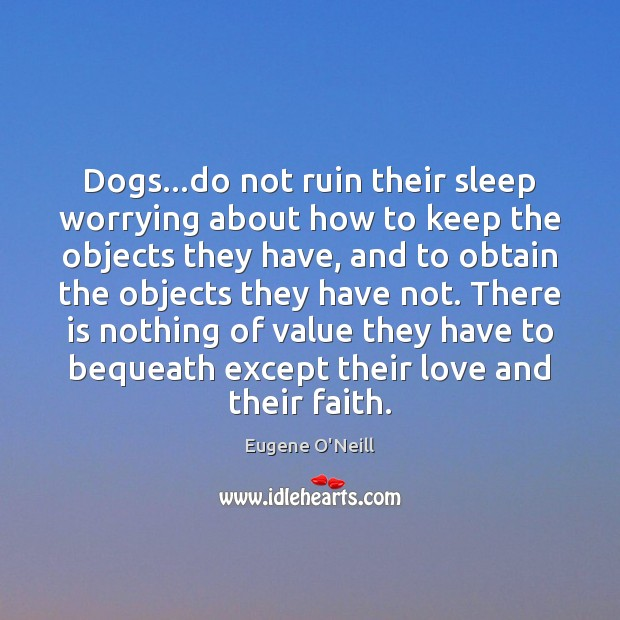 Dogs…do not ruin their sleep worrying about how to keep the Image