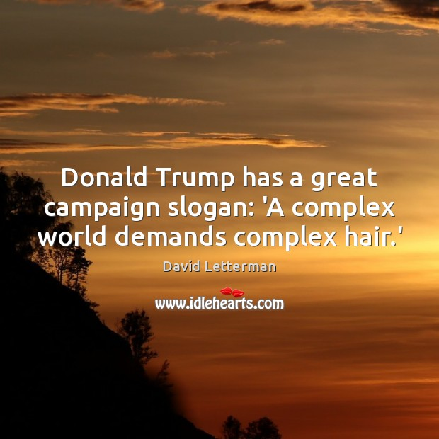Donald Trump has a great campaign slogan: 'A complex world demands complex hair.' Image