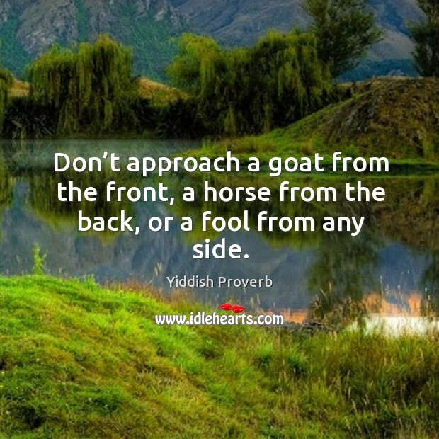 Image, Don't approach a goat from the front, a horse from the back, or a fool from any side.