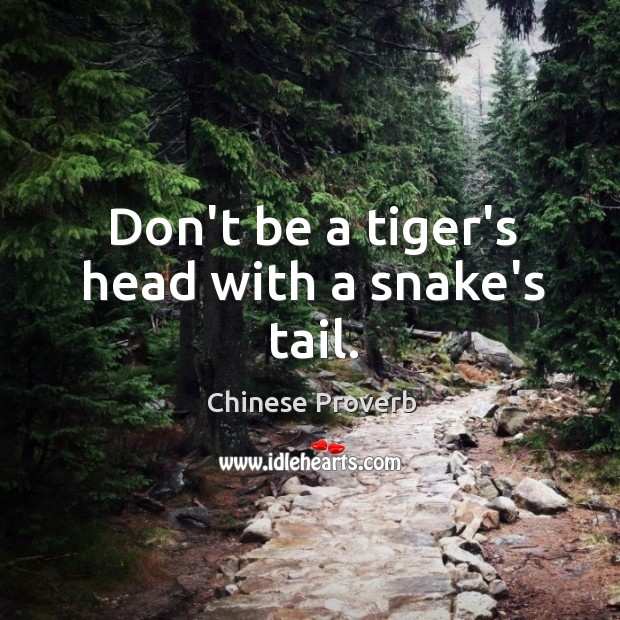 Image, Don't be a tiger's head with a snake's tail.