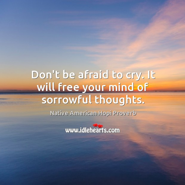 Don't be afraid to cry. It will free your mind of sorrowful thoughts. Native American Hopi Proverbs Image