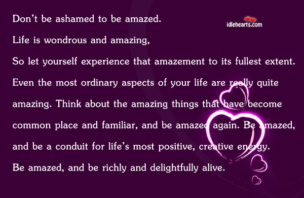 Don't Be Ashamed To Be Amazed. Life Is…