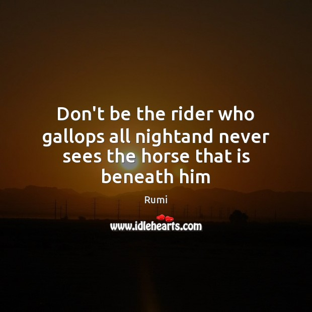 Don't be the rider who gallops all nightand never sees the horse that is beneath him Image