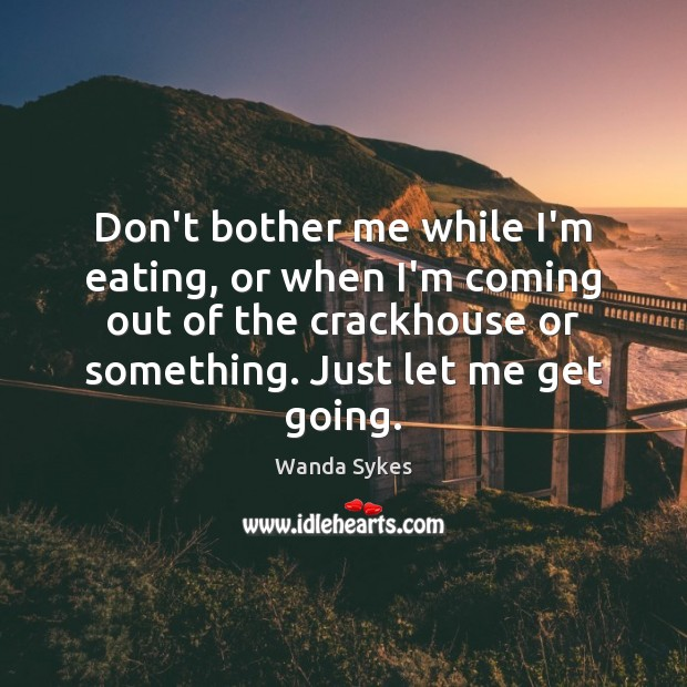 Don't bother me while I'm eating, or when I'm coming out of Wanda Sykes Picture Quote