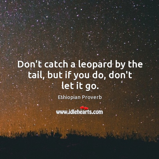 Don't catch a leopard by the tail, but if you do, don't let it go. Ethiopian Proverbs Image