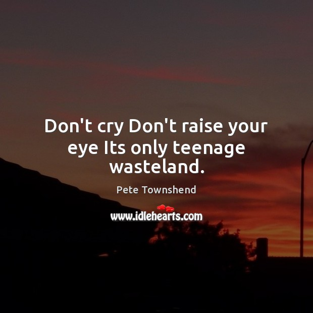 Don't cry Don't raise your eye Its only teenage wasteland. Pete Townshend Picture Quote