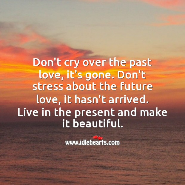 Don't cry over the past love, it's gone. Future Quotes Image