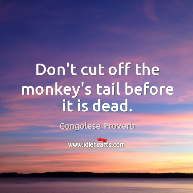 Don't cut off the monkey's tail before it is dead. Congolese Proverbs Image