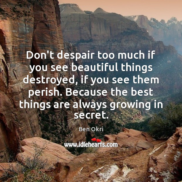 Don't despair too much if you see beautiful things destroyed, if you Ben Okri Picture Quote