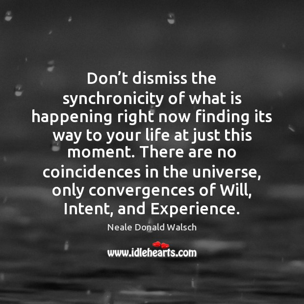 Don't dismiss the synchronicity of what is happening right now finding Neale Donald Walsch Picture Quote