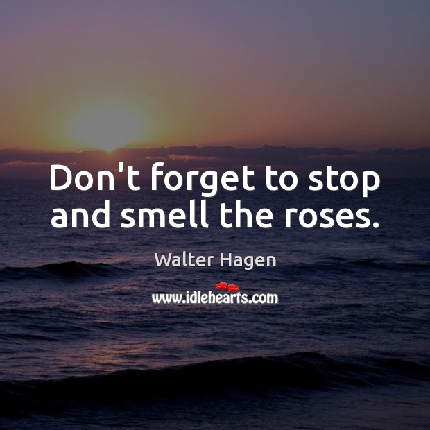 Don't forget to stop and smell the roses. Image