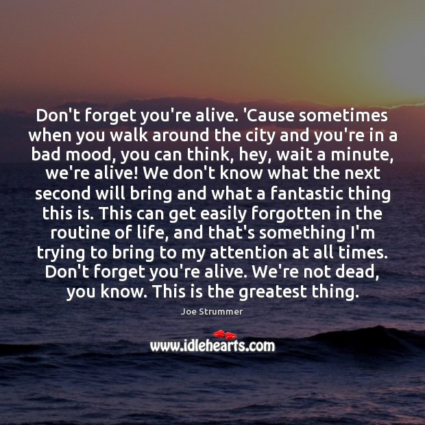 Don't forget you're alive. 'Cause sometimes when you walk around the city Image