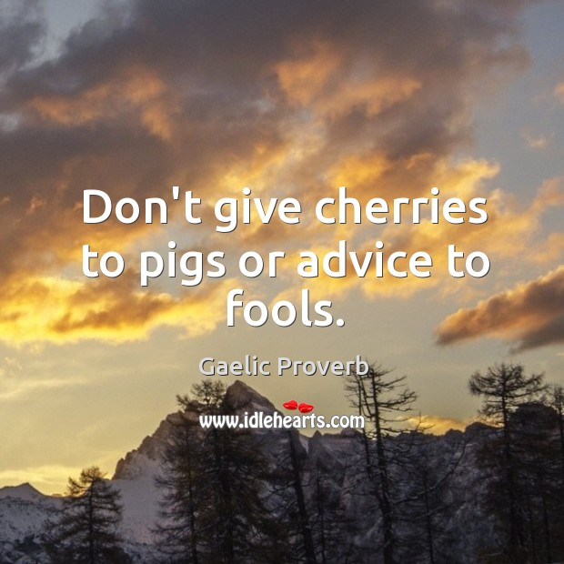 Don't give cherries to pigs or advice to fools. Gaelic Proverbs Image