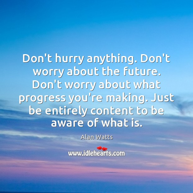Don't hurry anything. Don't worry about the future. Don't worry about what Alan Watts Picture Quote