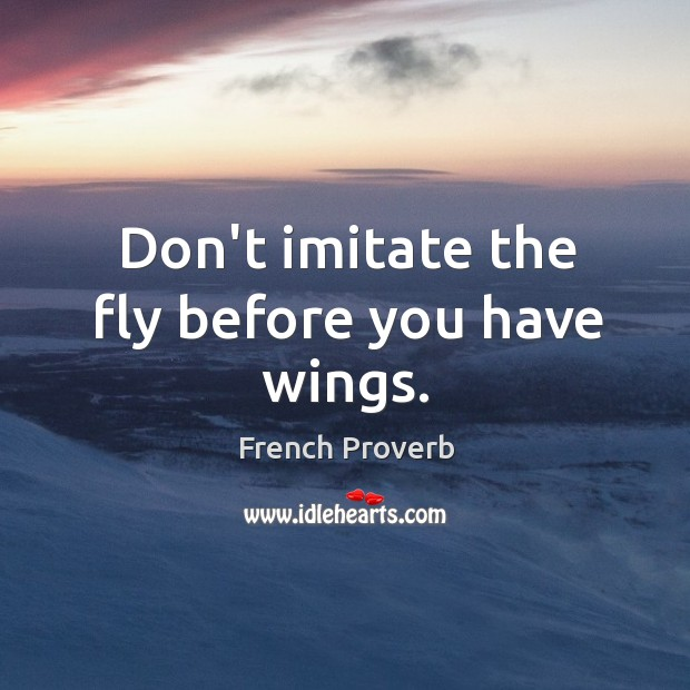 Don't imitate the fly before you have wings. French Proverbs Image