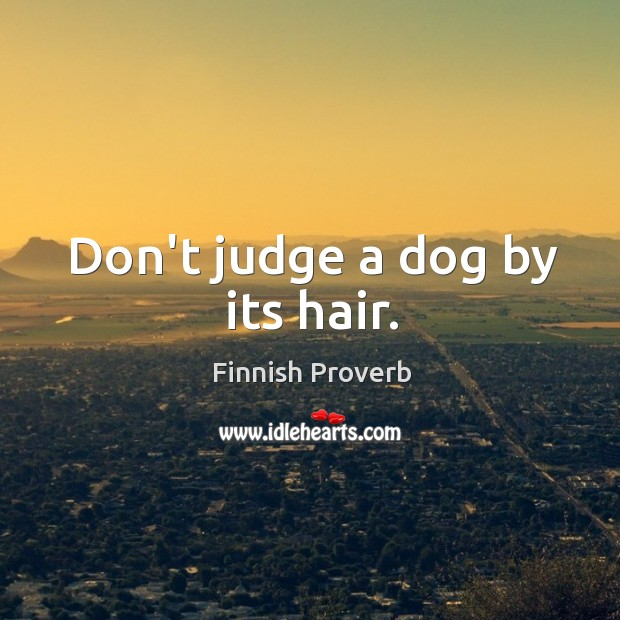Don't judge a dog by its hair. Finnish Proverbs Image