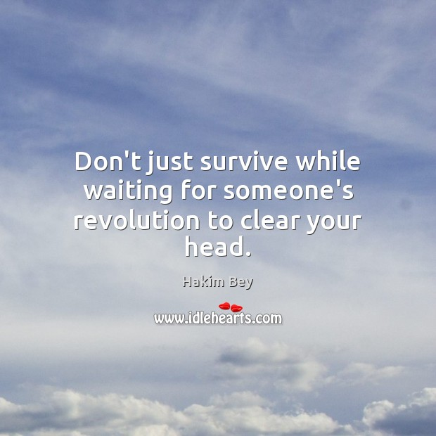 Don't just survive while waiting for someone's revolution to clear your head. Hakim Bey Picture Quote