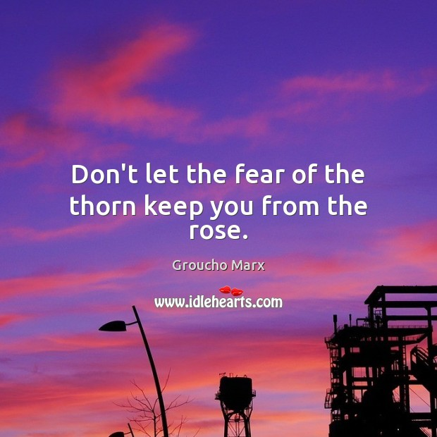 Image, Don't let the fear of the thorn keep you from the rose.