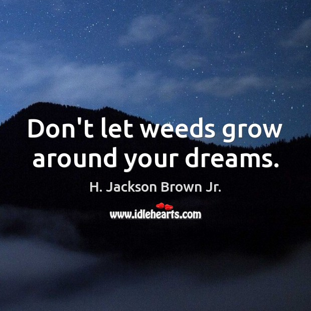 Image, Don't let weeds grow around your dreams.